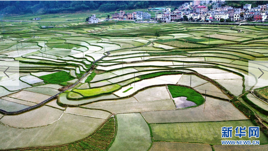 4月13日,空中俯瞰广西河池市都安瑶族自治县吉隆梯田,宛如一幅唯美的水墨画。(无人机照片)。新华网发 高东风 摄