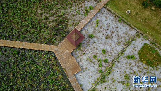 无人机航拍南宁那考河湿地公园。新华网发 蓝程维摄