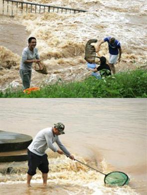 广西雨后河水丰盈 民众喜捞渔获