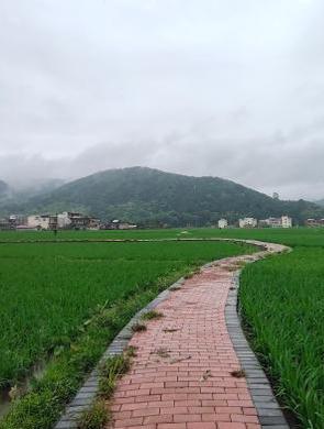 """桂北小县城""""袁""""来稻花香"""