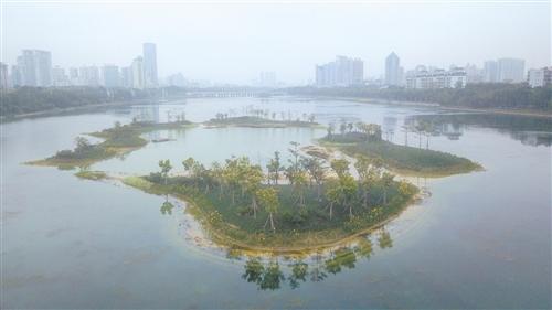 4座生态岛的设置让南湖生态景观得到很大提升
