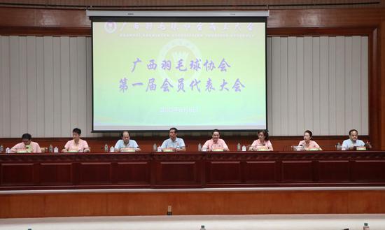 广西羽毛球协会正式成立