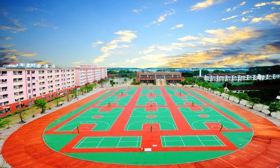美丽的校园环境