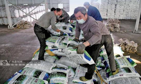 2月18日,在罗城仫佬族自治县一家肥业公司仓储中心,工人们正在装运复合肥料,确保春耕生产顺利进行。蒙增师 摄