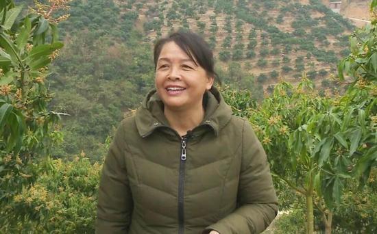 陆秀缎回到家乡重新种芒果。受访者供图
