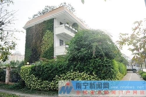 云景路垃圾中转站绿植种上房屋外墙