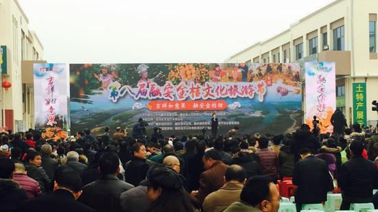 融安县第八届金桔文化旅游节开幕!电商助力融安金桔