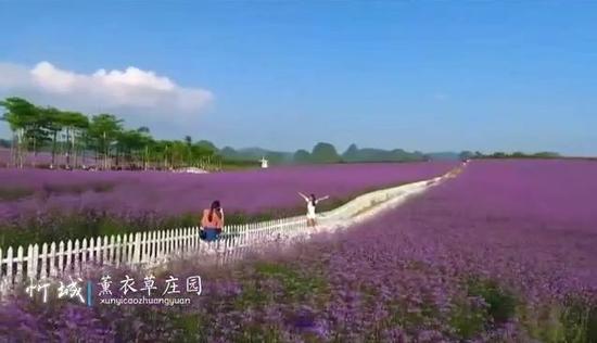 这部介绍来宾旅游景观的宣传片美翻啦!还有美图奉上