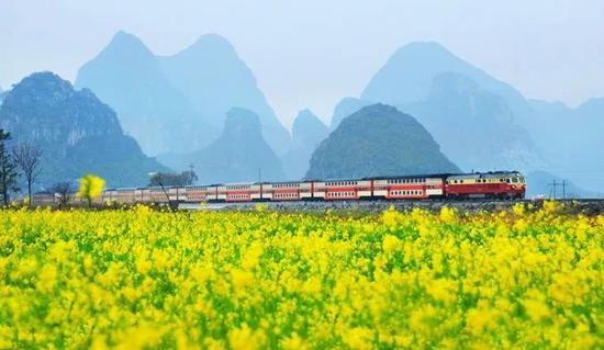 """桂林的赏花季已在招手 这份春天""""花历""""送给你"""