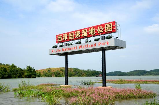 图片来自横县县宣