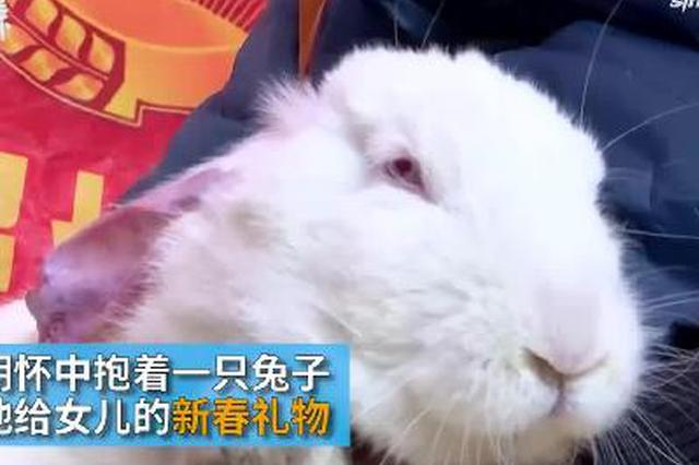 摩托大军返乡:打工母亲怀抱兔子送女儿