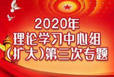 2020年理论学习中心组(扩大)第三次专题