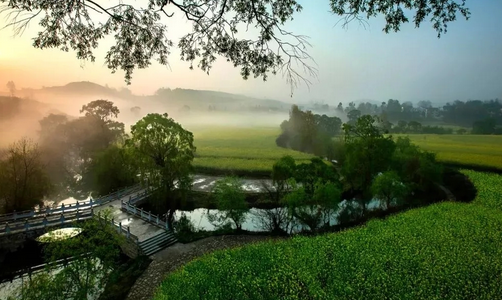 柳岸水乡——与大自然最亲近的地方