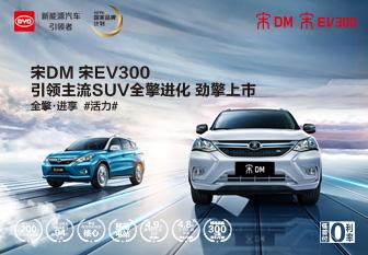 比亚迪宋DM/宋EV300上市 开启新格局
