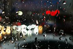 雨珠世界里的小美好
