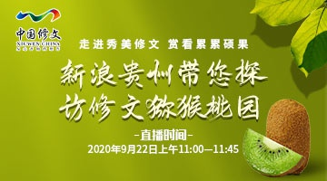 【直播】新浪贵州带您探访修文猕猴桃园