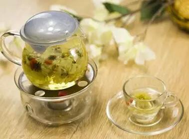 护肝喝白菊茶更好