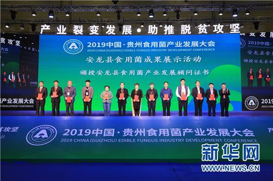 11月15日,安龙县在食用菌成果展示会开幕式现场聘请了一批产业发展顾问。新华网 卢志佳 摄