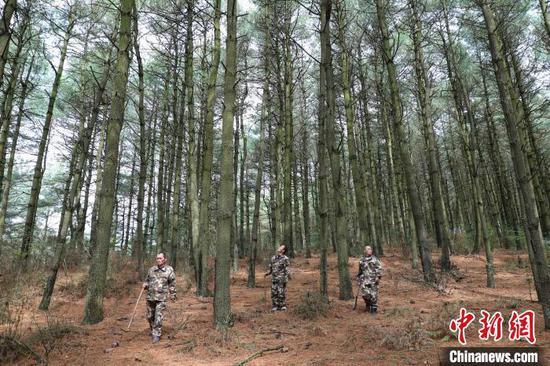 图为贵州护林员。 瞿宏伦 摄