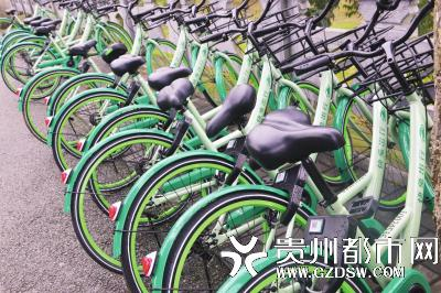 一排快兔出行的共享单车被拆除坐垫下方的固定螺丝,全部无法骑行。