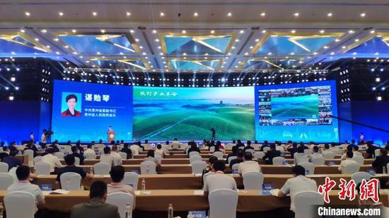 贵州省委副书记、省长谌贻琴作招商引资推介。宁南 摄