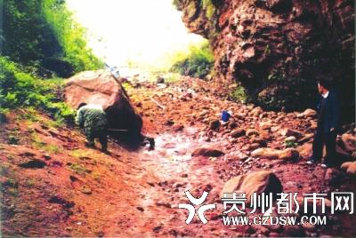 华南虎主要生活于山区密林中,一般白天蛰伏于崖洞或阴凉处休息。