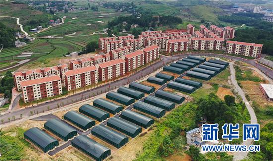 6月11日航拍的贵州安龙县易地扶贫搬迁社区的食用菌基地。新华网 卢志佳 摄