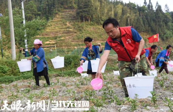 九秋村驻村干部与村民们一起农耕