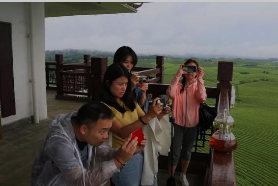 两岸媒体在湄潭永兴万亩茶海拍摄贵州茶