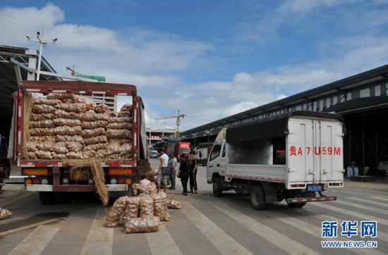 9月11日,贵阳农产品物流园内正在进行土豆批发交易。 新华社记者 向定杰 摄