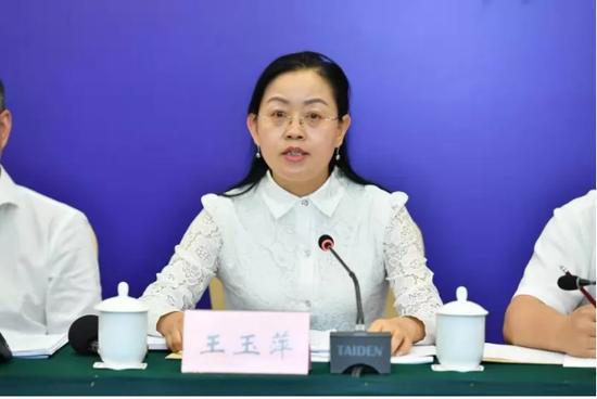 贵州电网公司副巡视员、电力交易中心董事长王玉萍回答记者问