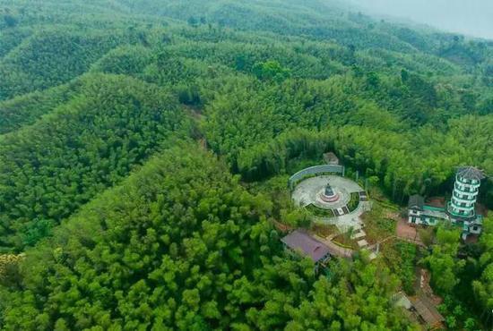 竹海森林公园