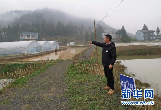 烟雾缭绕的小龙虾基地。新华社记者汪军摄