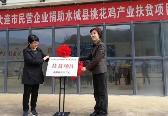 大连市民营企业捐助水城县桃花鸡