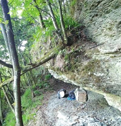 罗勇谟挂在大山岩石下的引蜂巢。