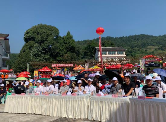 息烽县第十三届红岩葡萄乡村避暑