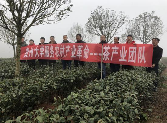 水城县:携手茶叶院士团队 助推