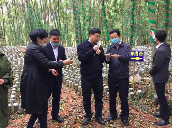 省投资促进局局长马雷一行赴从江县调研