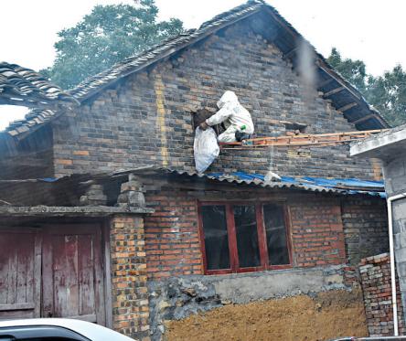 消防员摘除马蜂窝。 图由消防提供