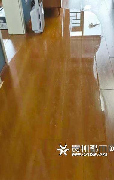 客厅内粪水。受访者供图