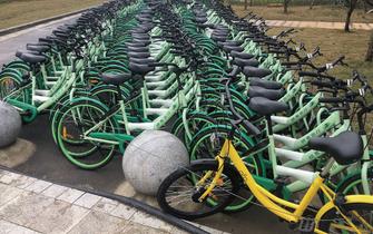 """大学城被暂扣的共享单车""""解放了"""""""