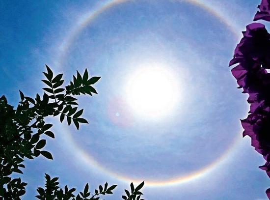 好美!贵州多地现日晕美景 你看到了吗