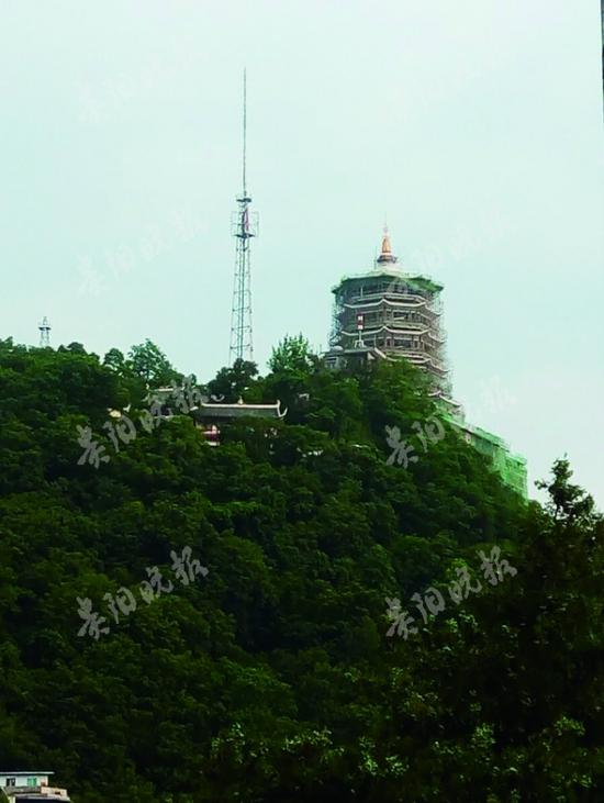 远望东山寺,藏经阁隐藏在一片树林中