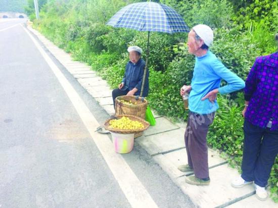 老人在高速路上摆摊