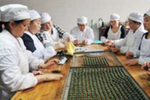 """雷公山银球茶荣获茶博会""""中国好茶""""绿茶类金奖"""