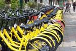 贵阳共享单车50万用户注册 成春季骑行增长最快城市