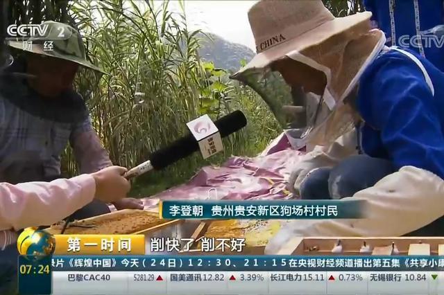"""贵州贵安:蜂蜜成熟有市场 村民算起""""甜蜜账"""""""