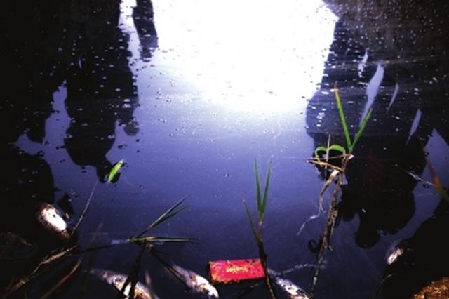 贵阳东郊一水渠受污染 贵阳和龙里两地联合执法查污染