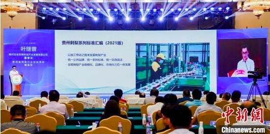 《贵州刺梨系列标准汇编(2021版)》发布