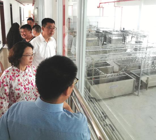 来宾参观生产车间流水线。